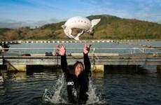 Développer l'élevage des esturgeons au Vietnam