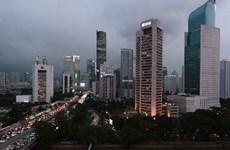 Indonésie: Le président Joko Widodo décide de transférer la capitale