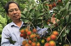 Nouvelle tendance du secteur cosmétique : opportunités pour le ramboutan du Vietnam