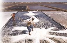 Propos sur le sel