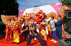 Le festival de la culture vietnamienne - Huong Viet 2019 en Allemagne
