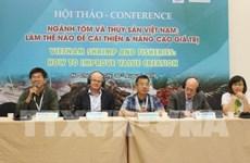 Des pistes pour développer l'industrie de la crevette vietnamienne
