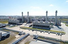 La Compagnie thaïlandaise Gulf envisage de construire une centrale électrique au Vietnam