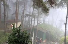 Vinh Phuc favorise l'exploitation du tourisme rural