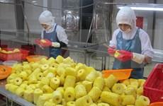 Le Vietnam et les Pays-Bas boostent la coopération dans le domaine de l'agriculture