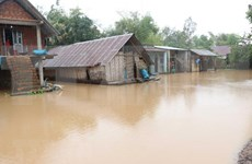 Germanwatch : le Vietnam parmi les pays le plus touchés par le changement climatique