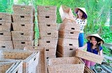 Le métier de tissage de paniers en jacinthe d'eau à Bac Liêu