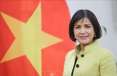Le Vietnam préside la réunion du Conseil de coordination de l'ASEAN sur les travaux de l'OMC