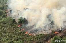 Les incendies de forêt compliquent le combat contre le COVID-19 en Indonésie