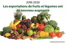 Les exportations de fruits et légumes ont de nouveau augmenté en juin