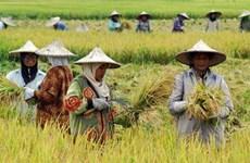 L'Indonésie et la Turquie ont convenu de porter le commerce agricole à 10 milliards de dollars