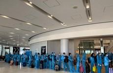 COVID-19 : rapatriement de plus de 340 citoyens vietnamiens au Japon