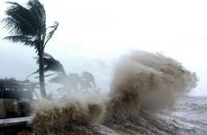 Télégramme officiel du gouvernement sur la lutte contre la tempête Sinlaku