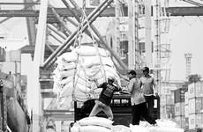 Moody's: les entreprises indonésiennes font face à de nombreuses difficultés à cause du COVID-19