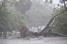 La tempête Noul provoque de lourdes dégâts dans des provinces du Centre