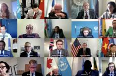 Le Vietnam à une réunion du Conseil de sécurité sur la région du Sahel