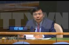 Le Vietnam soutient l'élargissement de la composition du Conseil de sécurité de l'ONU