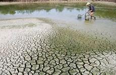 Surmonter les défis du changement climatique au Vietnam