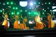 "Programme artistique ""Hello 2021 - Amazing Night"" à Da Nang"