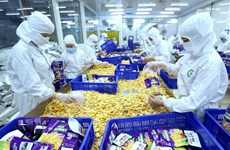 Pour que les produits vietnamiens à l'export ne soient plus «anonymes»