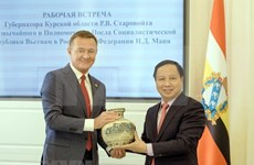Vietnam-Russie : promotion de la coopération déconcentrée