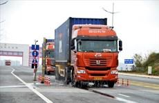 Les villes de Mong Cai (Vietnam) et de Dongxing (Chine) renforcent leur coopération