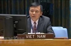 ONU : Le Vietnam le Vietnam appelle le Mali à mettre en œuvre une feuille de route de transition