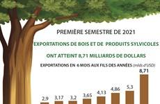 Exportations de bois et de produits sylvicoles: 8,71 milliards de dollars en six mois