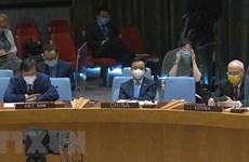 ONU : le Vietnam soutient une solution politique globale et des élections opportunes en Lybie
