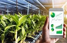 La province de Vinh Phuc promeut la transformation numérique dans l'agriculture