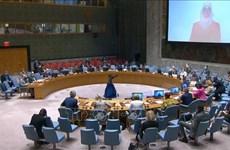 ONU : le Vietnam souligne l'importance de l'aide humanitaire au peuple syrien