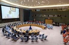 ONU : le Vietnam apprécie l'importance des élections opportunes en Libye