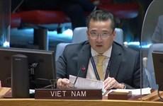ONU : Le Vietnam partage ses préoccupation sur la situation dans région des Grands Lacs