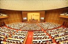 Approbation de la loi d'amnistie (amendée)