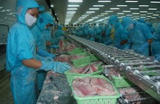Aquaculture : de nouvelles perspectives pour les exportations en 2019