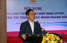 Le CPTPP aidera le Vietnam à accélérer son développement