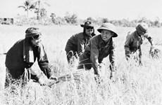 Le Cambodge ou l'histoire d'une renaissance