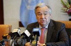 De nombreux pays soulignent l'importance de la Convention sur le droit de la mer