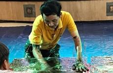 Un peintre vietnamien établit un record mondial