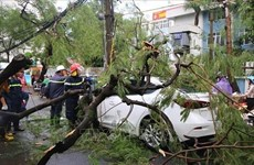 La tempête Podul fait trois morts et quatre blessés