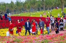 Vacances du Têt : les agences de voyage promettent de nouvelles expériences
