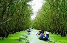 La forêt de Tra Su, « poumon vert » du Sud-Ouest