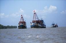 Pêche INN : présentation des résultats du travail avec une équipe de la CE