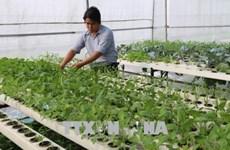 Le secteur de l'agriculture vise une croissance de 2,8% à 3% en 2020