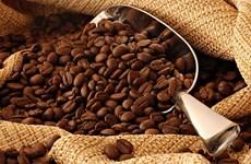 Large opportunité pour les exportations de café vers l'UE