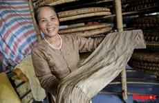 L'extraordinaire soie de lotus vietnamienne
