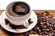 Affirmation de la position du café vietnamien sur le marché mondial
