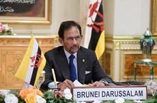 Le Brunei prend la présidence de l'ASEAN
