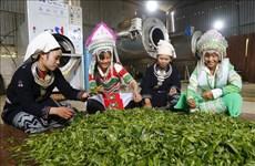 Efforts continus pour améliorer les conditions de vie des ethnies minoritaires