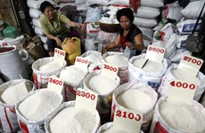 Les exportations cambodgiennes de riz vers la Chine en hausse de 46% en 2019